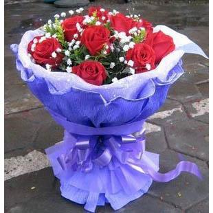 11朵红玫瑰/天空