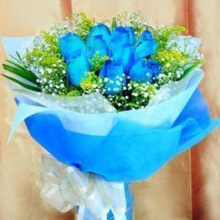 9朵蓝玫瑰/祝福