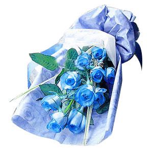 9朵蓝玫瑰花束