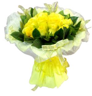 19朵黄玫瑰/请原谅