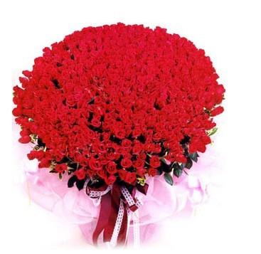 红玫瑰999枝