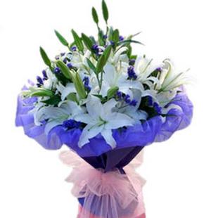 6支百合鲜花C