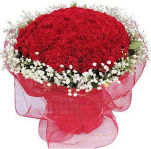 99朵红康乃馨