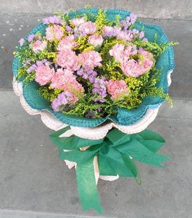 18朵粉色康乃馨