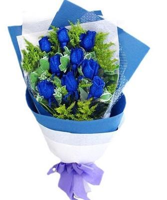 广州江高raybet网投蓝色经典